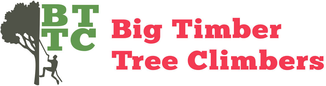 Big Timber Tree Climbers Logo